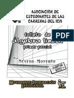 Algebra Lineal 1P NestorMontano.pdf