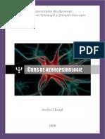 Curs de Neuropsihologie  - Chirita