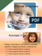 anatomadientestemporales-100927223818-phpapp01_2.pdf
