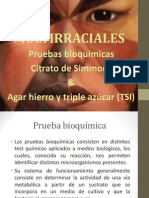 Pruebas bioquimicas (CSM y TSI).pptx