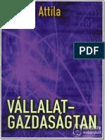 Bevezetes a Vallalatgazdasagtanba - Chikan Attila_2.pdf
