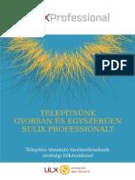 SuliXProfessional 7 PB008 i386 DVD Telepitesi Leiras