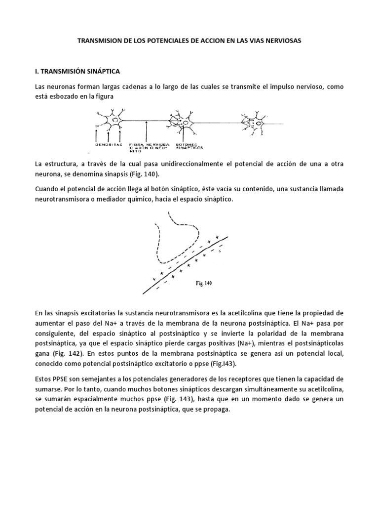 TRANSMISION DE LOS POTENCIALES DE ACCION EN LAS VIAS NERVIOSAS.docx