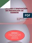 Calidad e Innovacion en PR 1.pptx