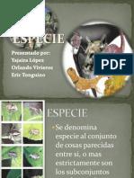 ORIGEN DE LA VIDA Y ORIGEN DE LAS ESPECIEs.pptx