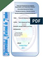 INFORME TEORIA DEL PROCESO 2.docx
