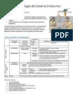 Fisiopatología del  sistema endocrino