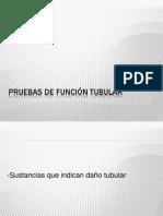 Pruebas de función tubular.pptx