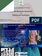 Slide de DMD e DH.pptx