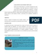 NUANCASA ENSAYO SECOND LIFE .pdf