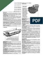 Guia Pueblos Precolombinos Chilenos_2M.pdf