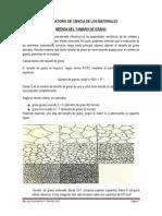 GUIA_CIENCIA_DE_LOS_MATERIALES_1__11564____11377__.pdf