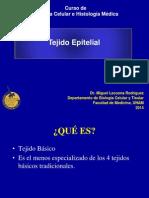 11. Tejido Epitelial.pdf