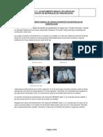ERGONOMIA -- TP N° 2- Levantamiento de cargas en corralón  - copia.docx