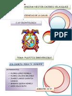 PULPITIS IRREVERSIBLEexpo.docx