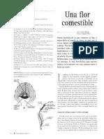 alcachofa para el higado.pdf