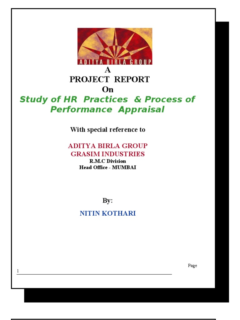 Aditya Birla Group Project Report