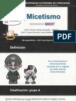 MICETISMO.pptx