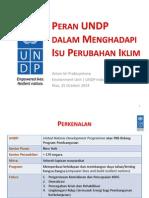 Peran UNDP Dalam Menghadapi Perubahan Iklim