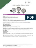 Pressure Gauge technical informations