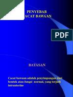 Peyebab Cacat Bawaan.whd