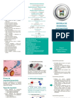 TRIPTICO...Relación de transmisión de diferencial.pdf