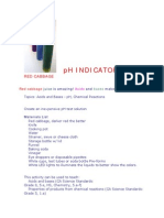 Red Cabbage Ph Indicator - From Raft Ideas