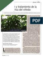 Intervenciones frente a la clorosis férrica en viticultura.pdf