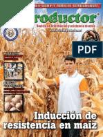 EL PRODUCTOR REVISTA - AÑO 10 - 117 - FEBRERO 2010 - PARAGUAY - PORTALGUARANI