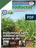EL PRODUCTOR REVISTA - AÑO 10 - 128 - ENERO 2011 - PARAGUAY - PORTALGUARANI