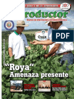 EL PRODUCTOR REVISTA - AÑO 11 - 132 - MAYO 2011 - PARAGUAY - PORTALGUARANI