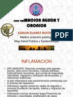04INFLAMACION AGUDA Y CRONICA.ppt