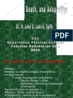 Cell Injury - Fk - Jsl Kbk