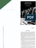 anarquia e organização.pdf
