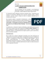 IDENTIFICACIÓN Y EVALUACIÓN DE IMPACTOS AMBIENTALES.docx