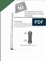 Capítulo 10 - Escoamento de fluidos em leitos fixos e colunas recheadas.pdf