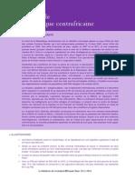 Guerre civile - Centrafique.pdf