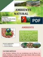 EL AMBIENTE NATURAL.pptx