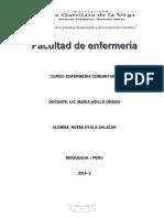 PAE 2014 DE COMUNIDAD.docx
