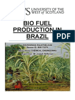 Bio Fuel Production in Brazil