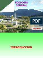 0 Introducción 2013.pdf
