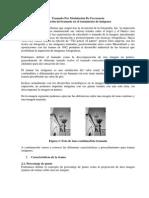 TRAMADO ESTOCASTICO.docx