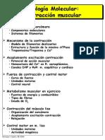 Musculo2004.pdf