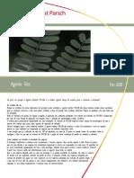 agenteglcc.pdf