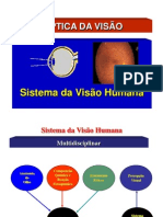 Aula de ÓPTICA DA VISÃO.pdf