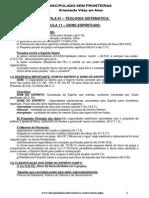 evangélico - teologia sistemática - aula 11 - dons espirituais.pdf