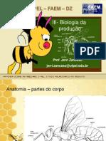 III-Biologia-da-produção.ppt