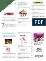 leafleat CA Seriks.pdf