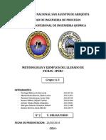 METODOLOGIA Y EJEMPLOS DEL LLENADO DE FICHAS.docx