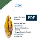 Lípidos-.pdf